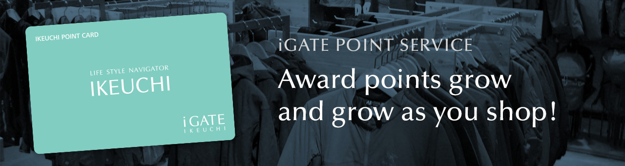 iGATE Point Service